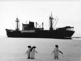 Антарктические фото