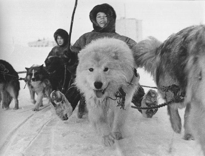 1964 год, Ямал.